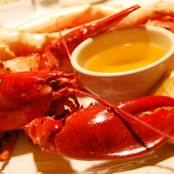 Steamed lobster melted butter